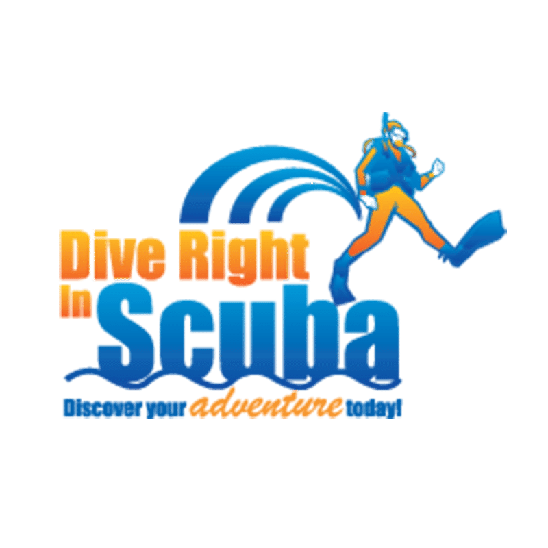 Hog DIN to Yoke conversion Kit