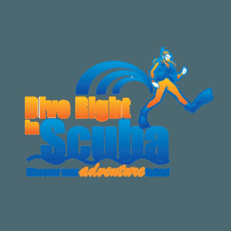 Dive Right In Scuba Log Book Binder
