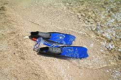 Tropical scuba lessons option – SDI $299, PADI $399